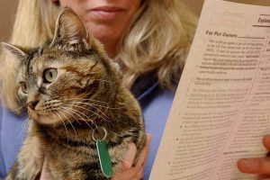Pet owners reminded to seek advice on travel plans ahead of 31 October
