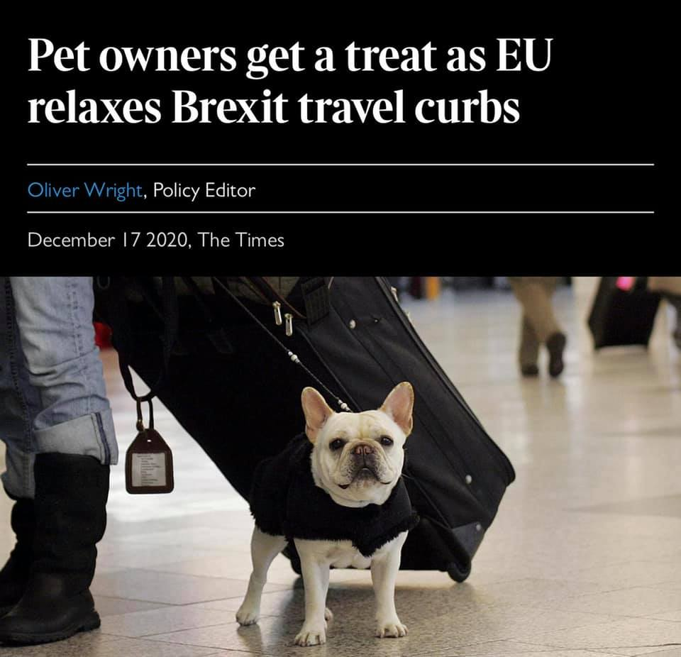 Pet owners will find it easier to take their cats, dogs or even ferrets to Europe after Brexit